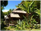 Bambuseraie-Bambusgarten