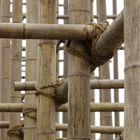 bambusknoten
