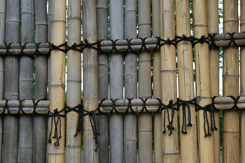Bambuswand im Japanischen Garten Bonn