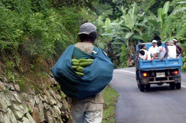 Banana man, Mahé (Seychelles)