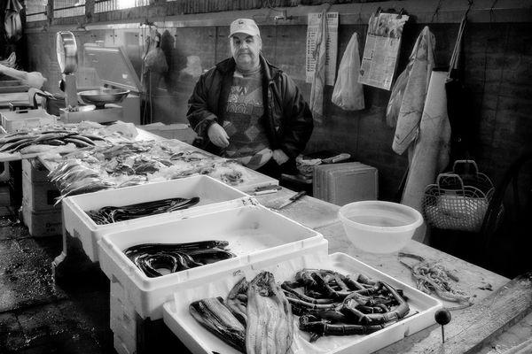 Banco del pesce.