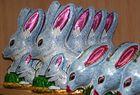 bandicoots - osterhasen auf australisch
