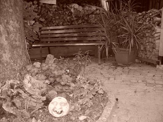 Bank im Garten