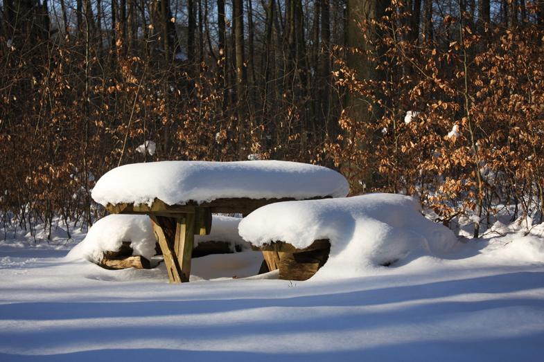Bank im Wald: Ganz hübsch mit dem Schnee - aber langsam reicht's...