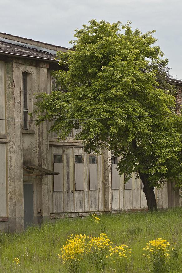 Baracken in Jena Nr. 3