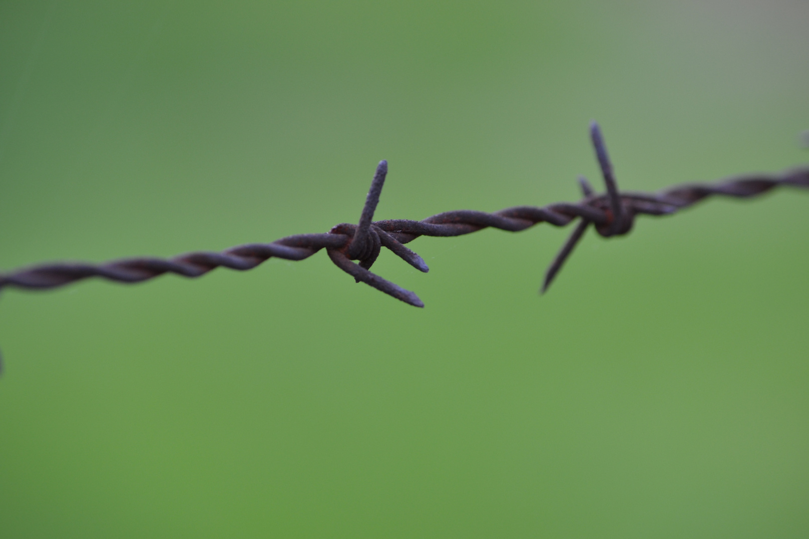 barbed wire :)