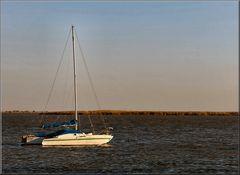 Barca al fiume Tejo.