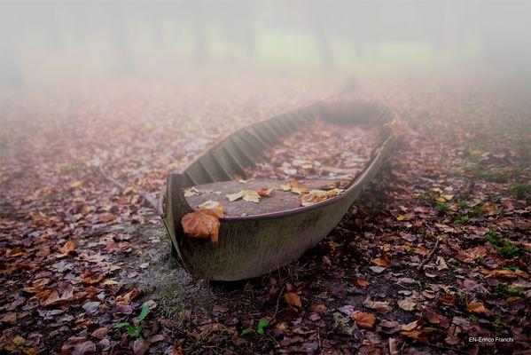 barca tra le foglie