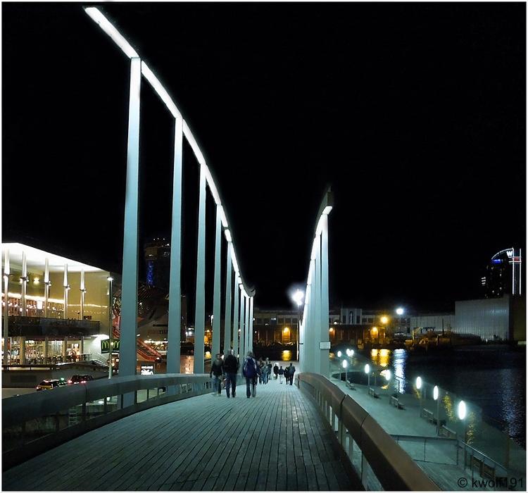 Barcelona 2013 - Rambla del Mar bei Nacht (2)