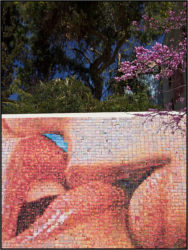 Barcelona | romantic walls |