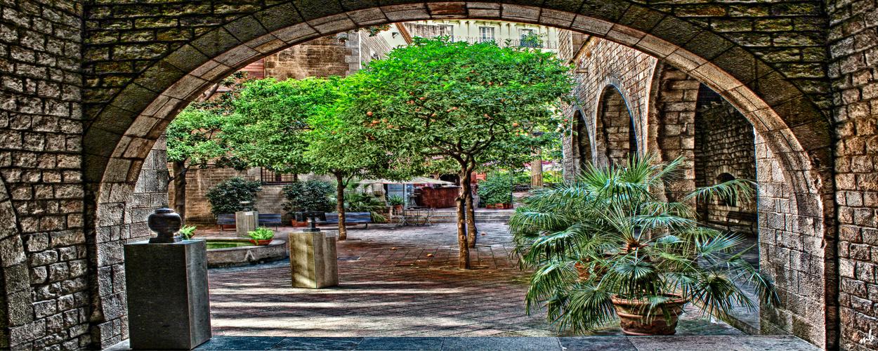 Barcelona Serie - Citrus Früchte Garten