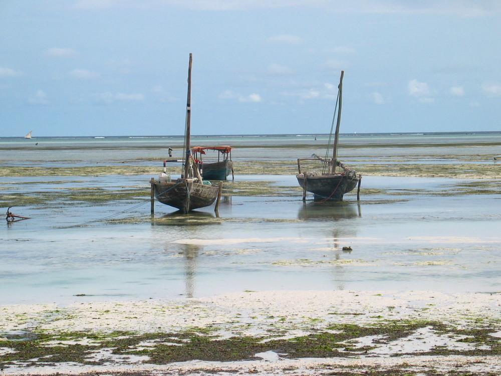 Barche che aspettano il mare