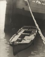 Barche e barconi