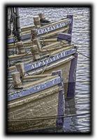 Barcos almadraba