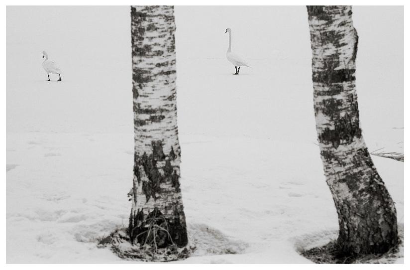 Barfuss im Schnee