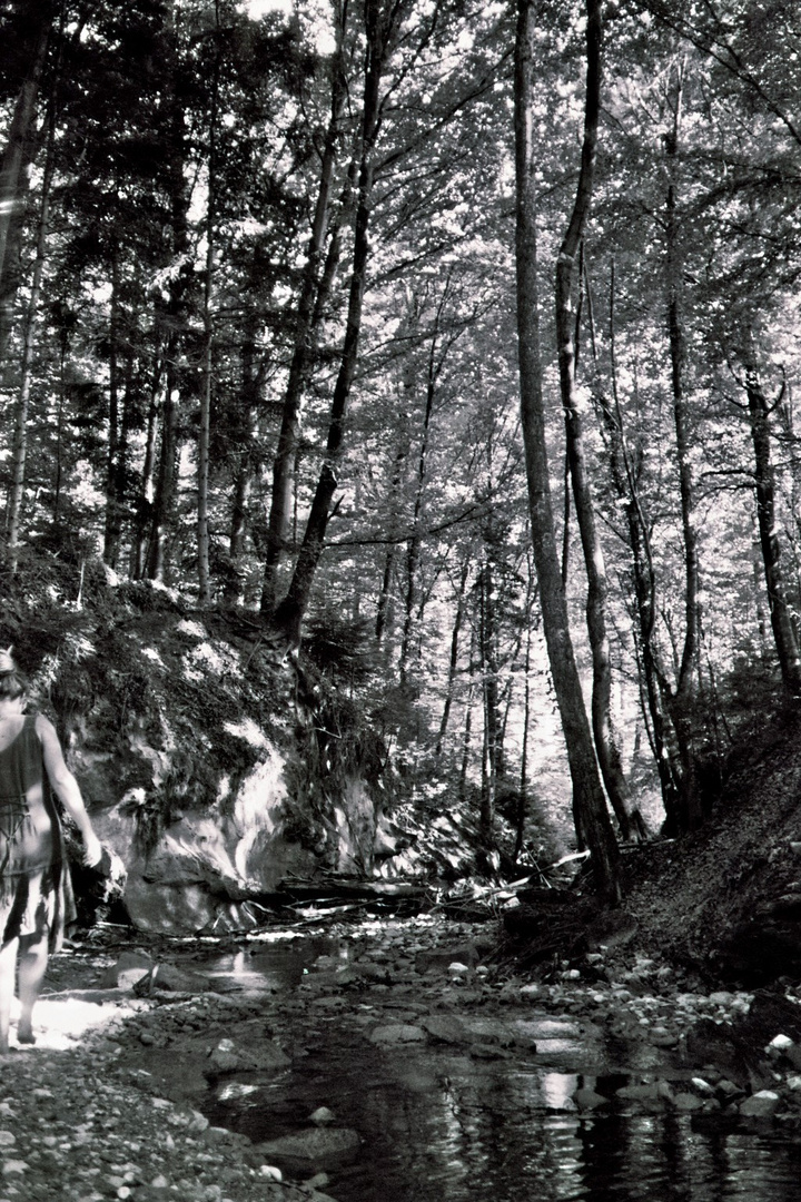barfuß im Wald...