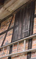 Barnhouse door with ladder