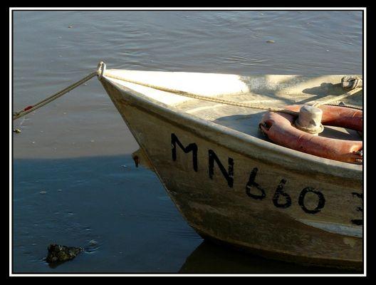 Barque 2