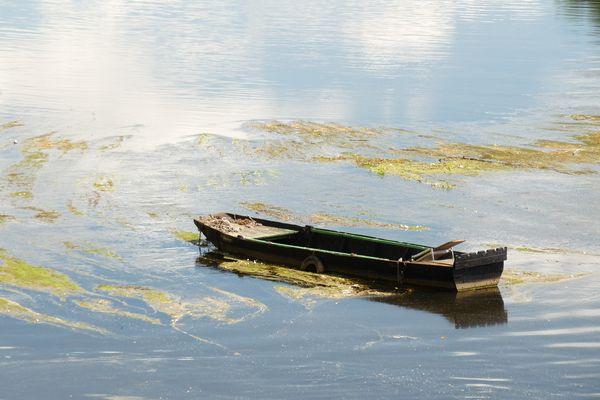 Barque à Chinon