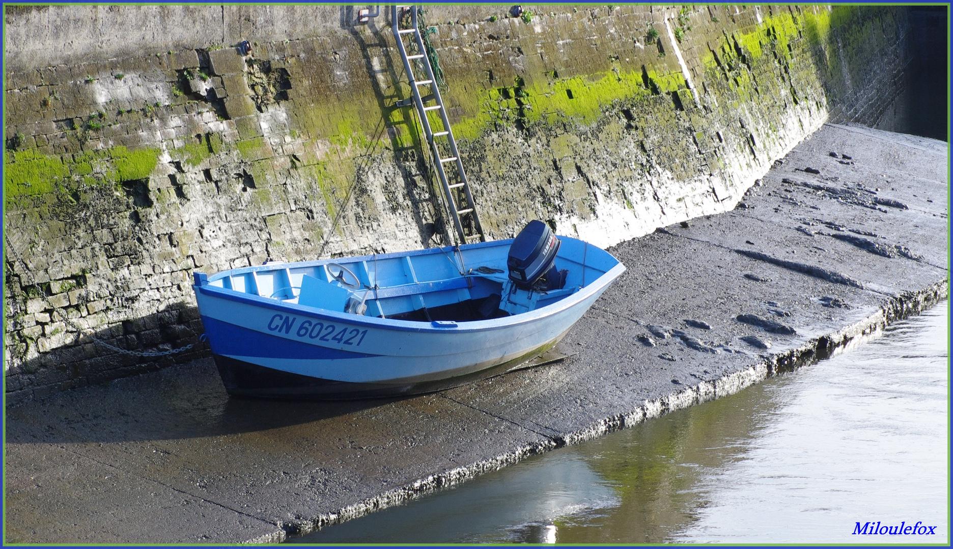 Barque à Isigny sur mer
