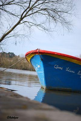 barque bleu au fil de l'eau