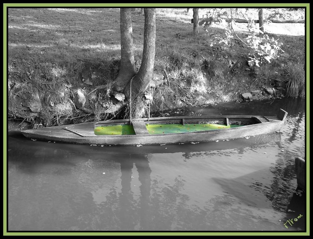 Barque de brière