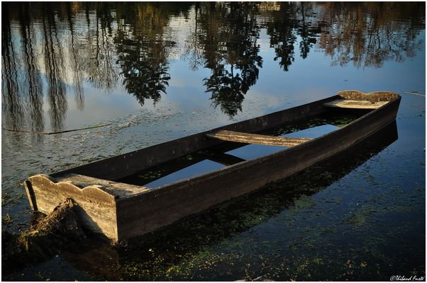 Barque...