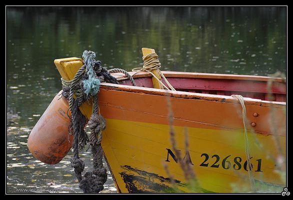 Barque orange