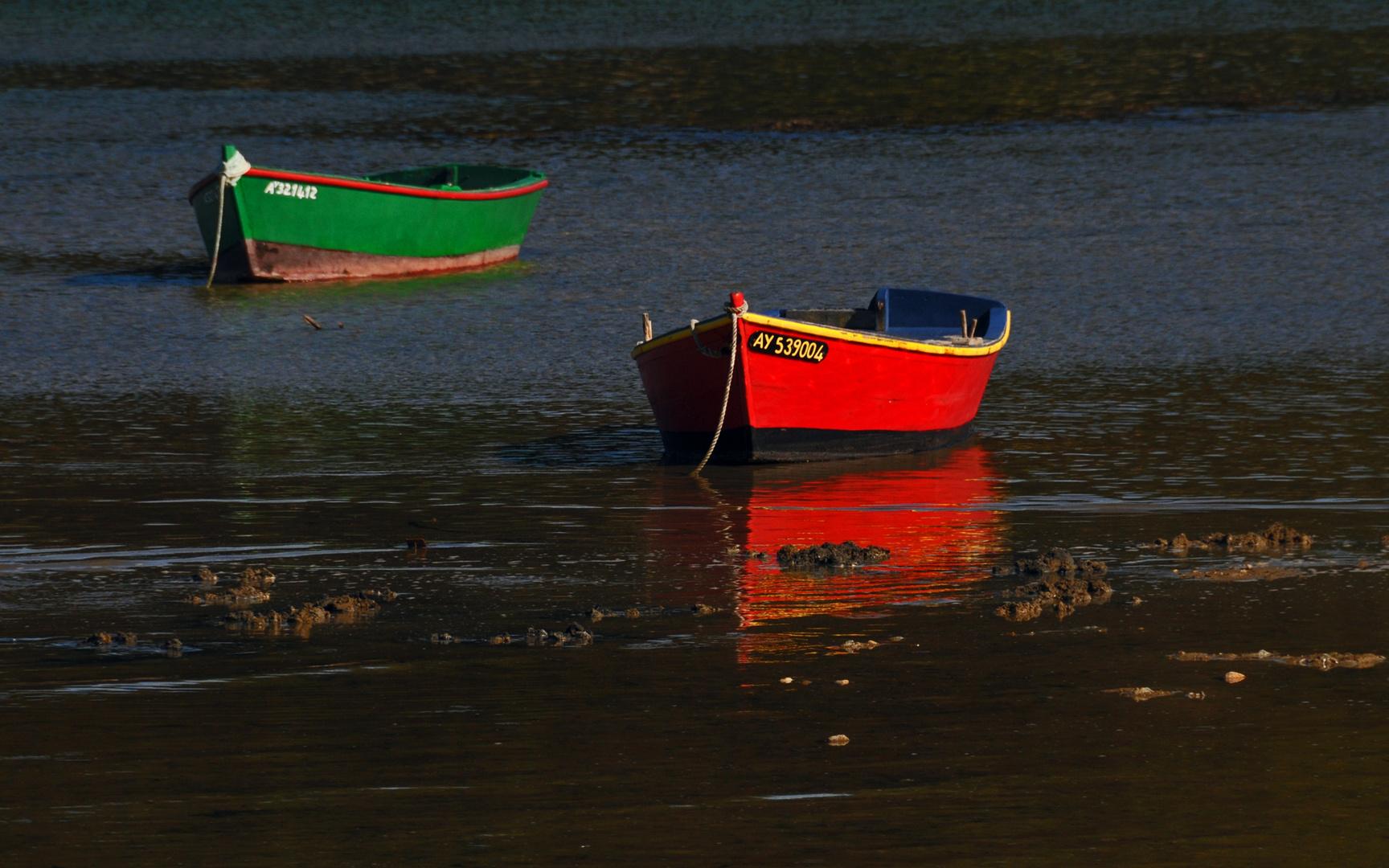 Barques à la Trinité sur Mer.