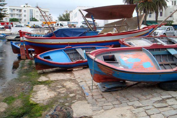 Barques colorées dans le port de Bizerte