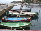 barques traditionnelles à Collioure