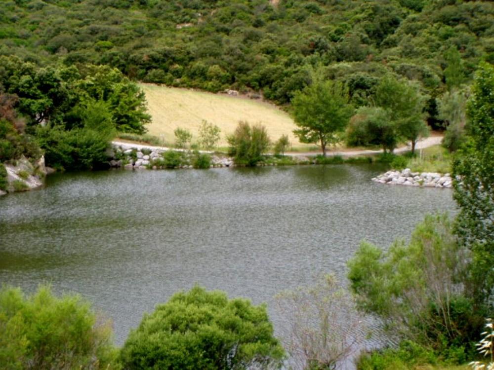 barrage des olivettes2
