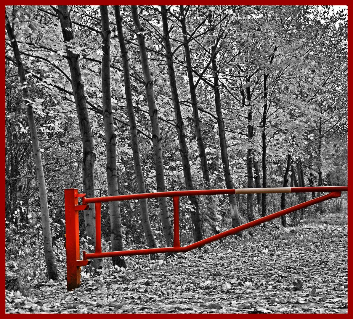 barrier to autumn