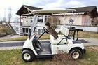 Bartkaninchen 32: Golf Caddy