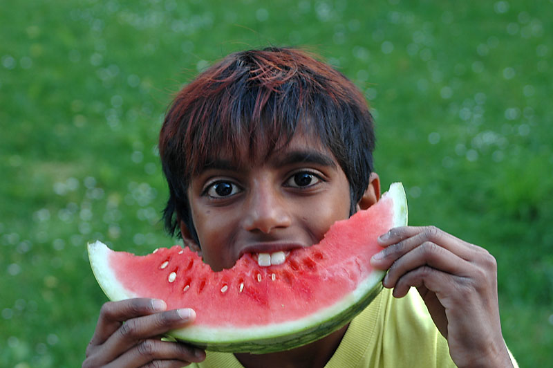 Basil mit Melone
