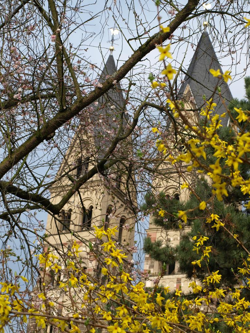 Basilika St.-Kastor Koblenz im Frühling