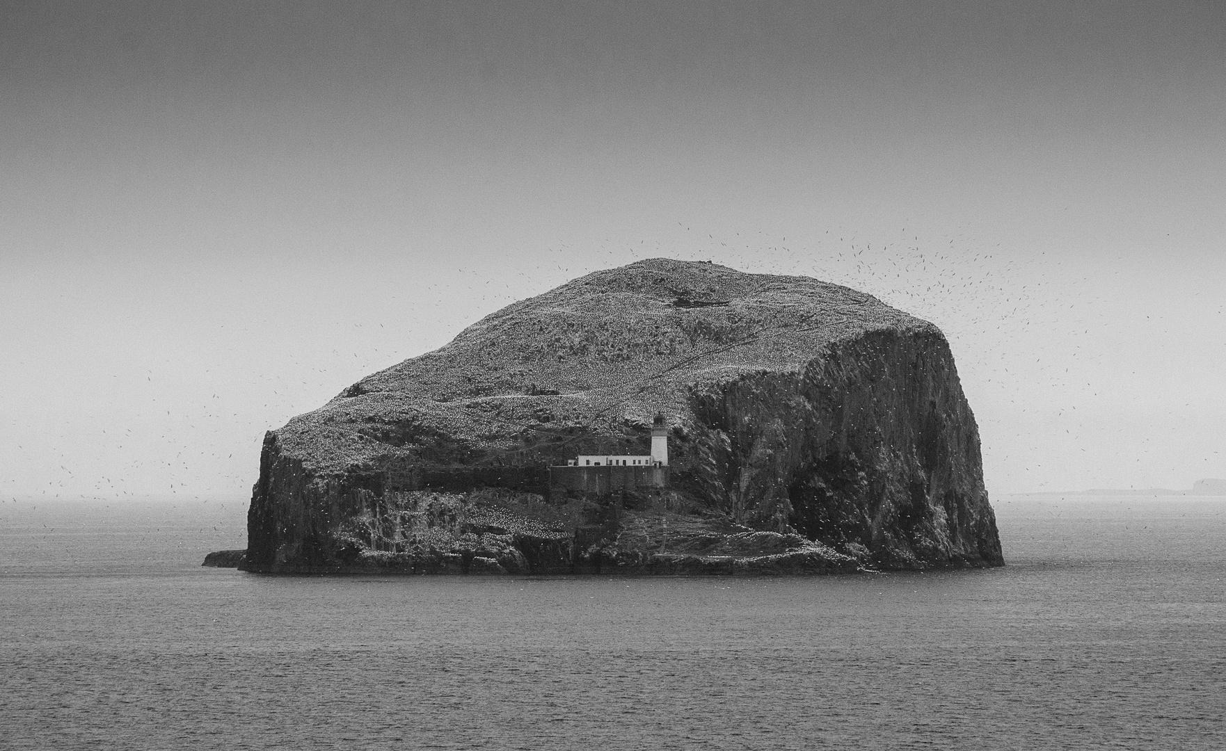 Bass Rock in North Berwick