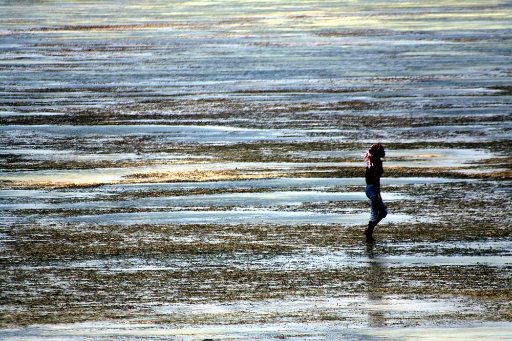 Bassa marea con ragazzo