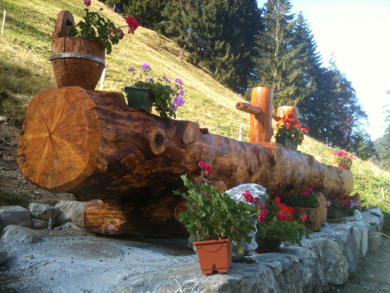 bassin en bois massif photo et image arbres bassin bois. Black Bedroom Furniture Sets. Home Design Ideas