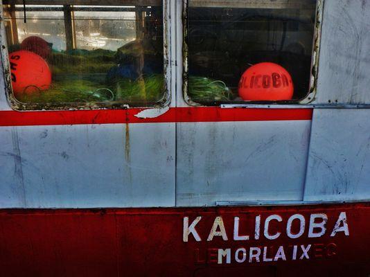 Bateau de pêche KALICOBA  - Morlaix