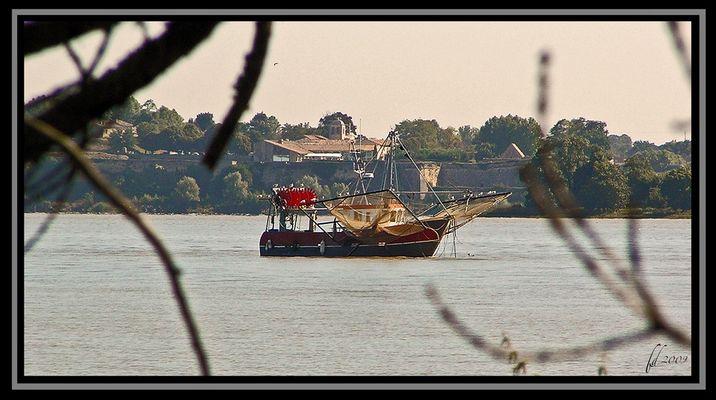 Bateau de pêche sur la Gironde