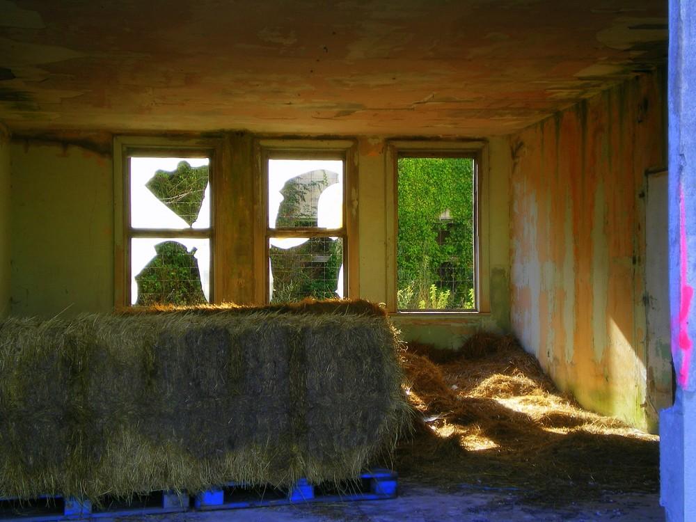 batiments désafectés ala rochelle