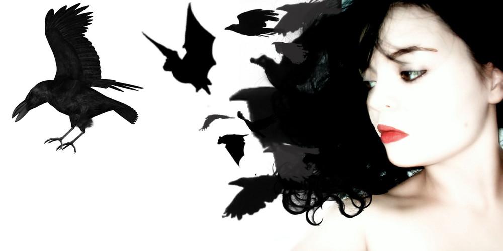 Bats & Crows