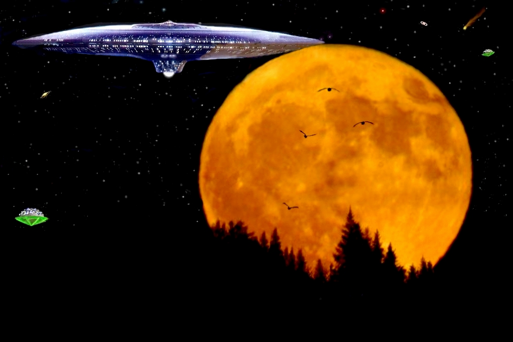 Battleship Nightfly