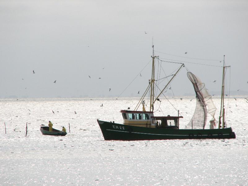 Battuta di pesca nel mare del nord