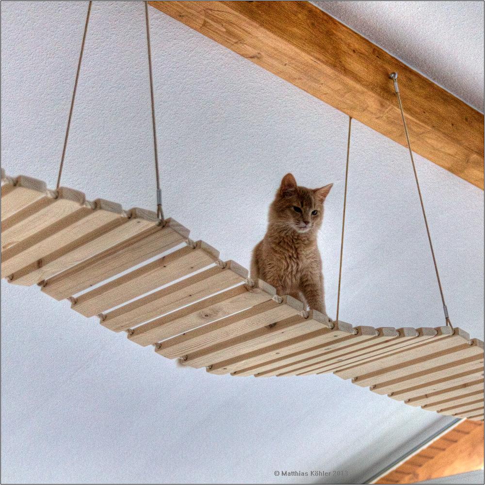 Bauanleitung für eine (Katzen-)Hängebrücke (3 Teile)