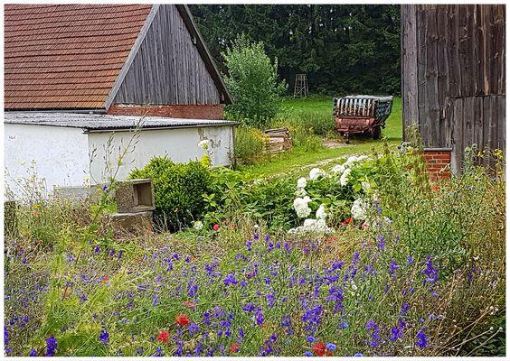 Bauerngarten - Idylle