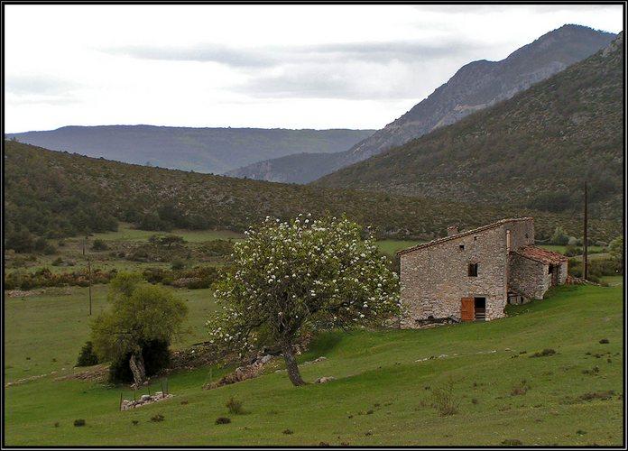 Bauernhaus in der Haute Provence