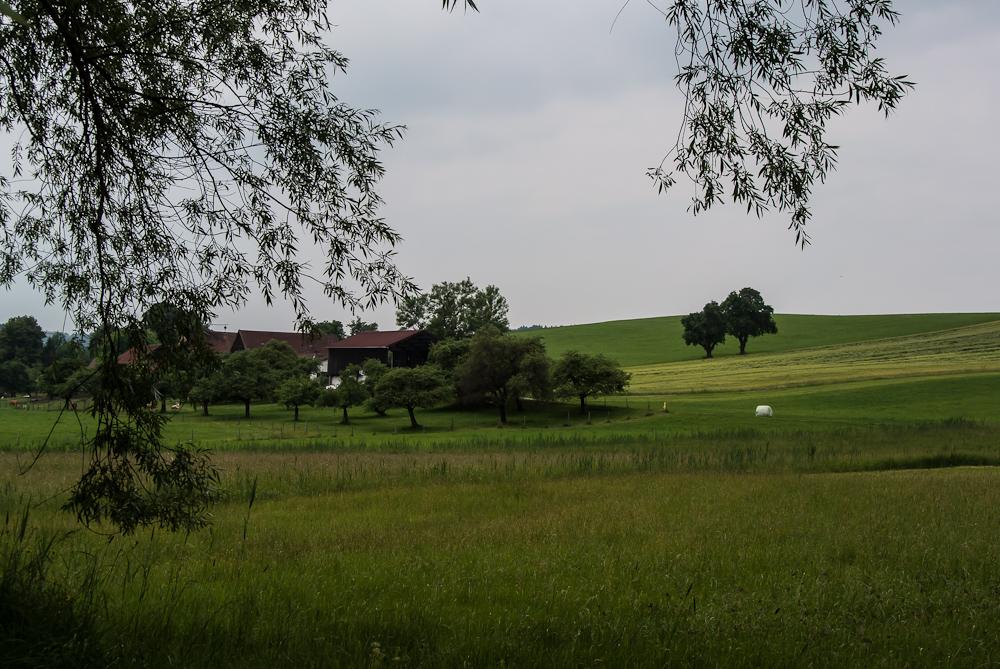 Bauernhof 2