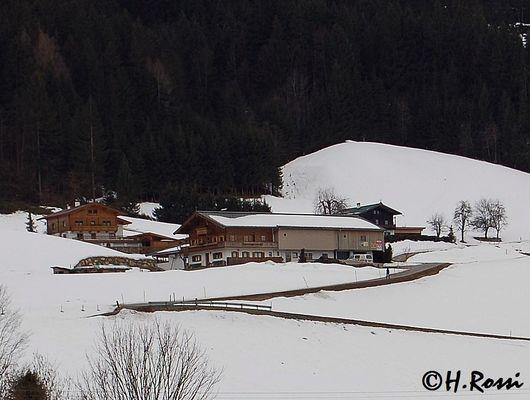Bauernhof am Waldesrand